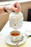 Woman's hand pouring tea Stock Image