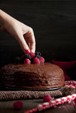 Woman's hand putting a blackberry on a chocolate cake Stock Photo