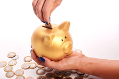 Woman's hand putting coins  Brazilian money into piggy bank Royalty Free Stock Images