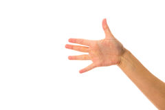 Woman's hand showing five fingers Stock Image