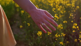 Woman's hand touching flowers closeup. dolly shot stock footage