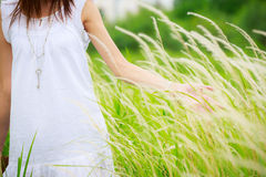Woman's hand touching green grass Stock Photos