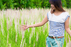 Woman's hand touching green grass Stock Photography