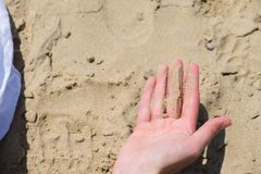 Woman holding sand in the hand on the beach, the view from the top stock images