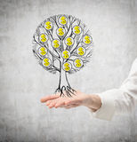 A woman's hand in a white shirt holds a sketched tree with dollar signs as a concept of wealth and personal success. Concrete back Royalty Free Stock Photos