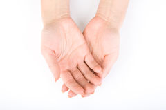 Woman's hands Stock Images