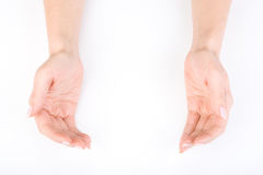 Woman's hands Stock Photography