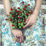Woman's hands with bouquet of berry Royalty Free Stock Photo