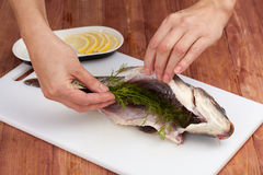 Woman's hands carving a carp Stock Images