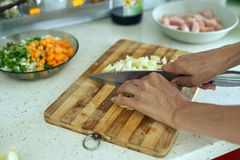 Woman chopping vegetables Royalty Free Stock Image