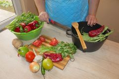 Woman`s hands cutting pepper, behind fresh vegetables. Woman cook at the kitchen. Chef cuts the vegetables into a meal. Preparing Stock Image