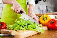 Woman's hands cutting vegetables Royalty Free Stock Images