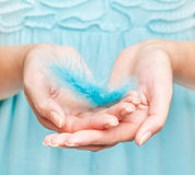 Woman's hands with feather Royalty Free Stock Image