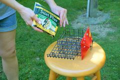 Suet Plus brand bird feed is being placed into cage shaped like house royalty free stock image