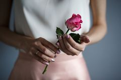 Woman`s hands hold a tender rose, romantic mood. Romantic casual style stock photos