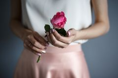 Woman`s hands hold a tender rose, romantic mood. Romantic casual style stock image