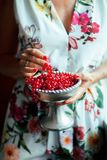 Woman`s hands holding bowl of currants, close up Royalty Free Stock Photo