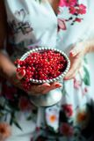 Woman`s hands holding bowl of currants, close up Royalty Free Stock Image