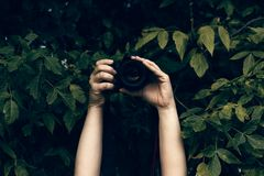 Woman`s hands holding camera and snapping photos Stock Photos