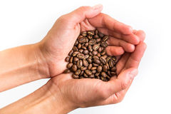 Woman's hands holding coffee beans stock photo