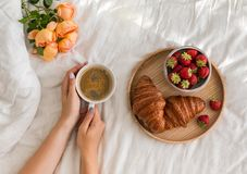 Woman`s hands holding a cup of coffee on the bed with white bedsheet. royalty free stock images
