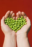 Woman's hands holding green peas Stock Photography