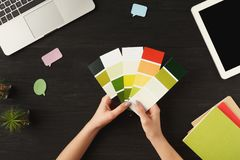 Woman`s hands holding palette of colors, top view. Woman`s hands holding palette of colors. Top view on human hands, laptop, notebook, color swatch and digital Stock Photography
