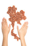 Woman's hands holding the pile of brown organic rice and jasmine Royalty Free Stock Photography