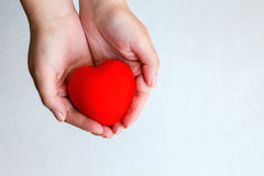 Woman's hands holding sweet red heart Stock Images