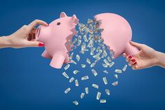 Woman`s hands holding two parts of broken piggy bank with heap of money falling down out of it. Financial collapse. Going bankrupt. Business failure royalty free stock photo
