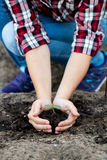 Woman's hands  holding young plant. Ecology concept Stock Images