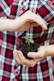 Woman's hands  holding young plant. Ecology concept Stock Image