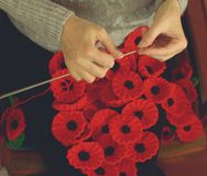 Woman`s Hands Knitting Poppies G for Charity Stock Image