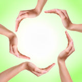 Woman's hands made circle. On green background Royalty Free Stock Photography