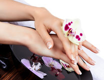 Woman's hands with orchids and bowl of water Royalty Free Stock Image