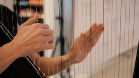 Woman`s Hands Playing Harp, Party And Celebration, Close Up Shot stock video