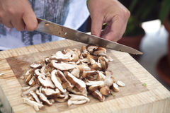 Woman's hands slicing mushrooms. Stock Photography
