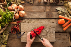 Woman`s hands slicing pepper on wooden board. Stock Images