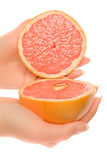 Woman's hands with two pieces of grapefruit Royalty Free Stock Photos
