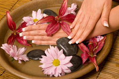 Woman's hands in water Royalty Free Stock Images