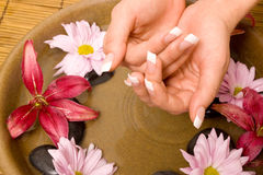 Woman's hands in water Stock Image