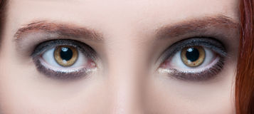 Woman`s hazel eyes with makeup and brown eyebrows. In closeup view royalty free stock photo
