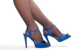 Woman`s legs. In black nylon stocking Royalty Free Stock Photo