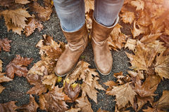 Woman`s legs in boots on autumn leaves royalty free stock images