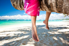Woman's legs closeup, sitting on coconut palm Stock Image