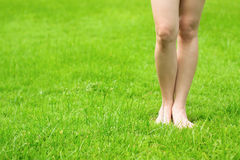 Woman's legs and fresh green grass Stock Images