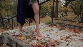 Woman`s legs in high heels stepping up the stairs. Fashionable woman`s long legs in autumn outfit and stylish orange high heels stepping up the stairs in fall stock video