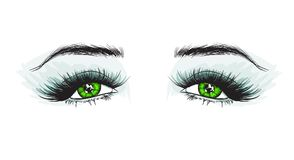 Woman`s luxurious eye with perfectly shaped eyebrows and full lashes Stock Photo