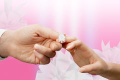 Woman's and man's fingers tied with a white ribbon Royalty Free Stock Photography