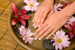 Woman's manicured hands in water Royalty Free Stock Image
